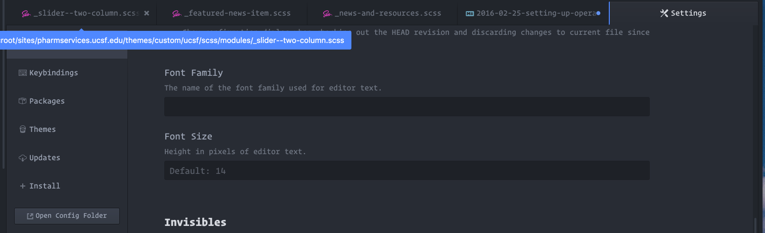 Screenshot of Atom menu settings